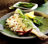 Suchit Fish 2