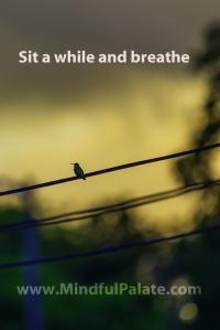 Bird On a Wire WM 500